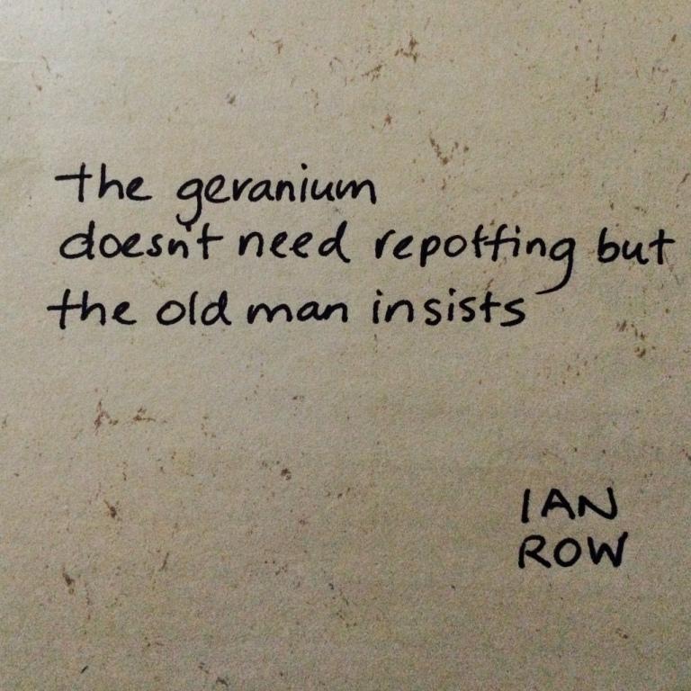 the-geranium